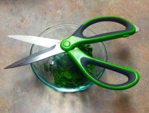 choppedcilantro