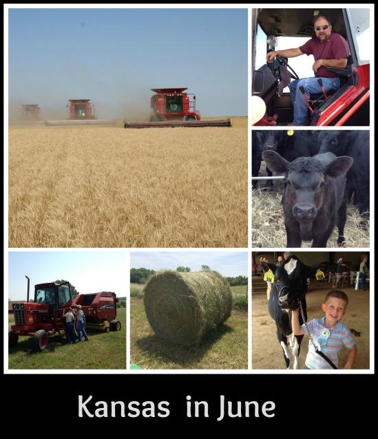 Kansas In June