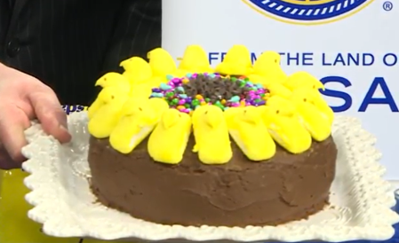 Sunflower Cake made with Peeps and Sunny Seeds! | Chef Alli's Farm Fresh Kitchen